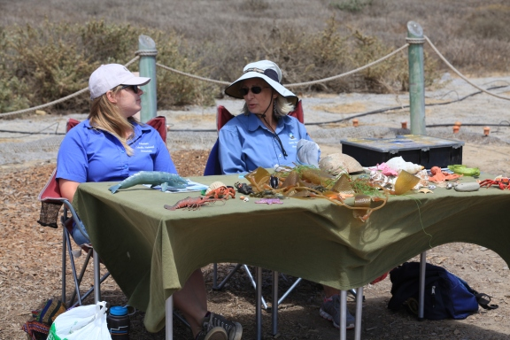 Volunteers manning tidepool education table
