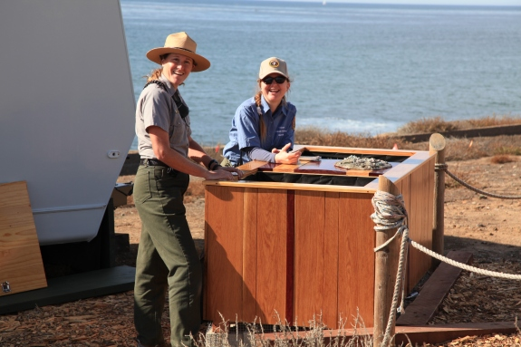 Tidepool Education Table