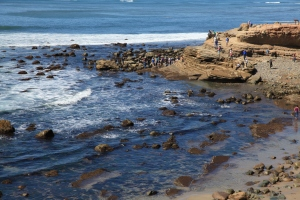 Low tide at Cabrillo National Monument's Tidepools