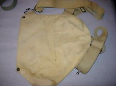 Kidney Bag