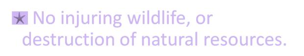 No injuring wildlife