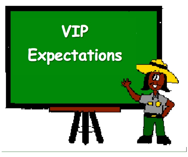 VIP Expectations