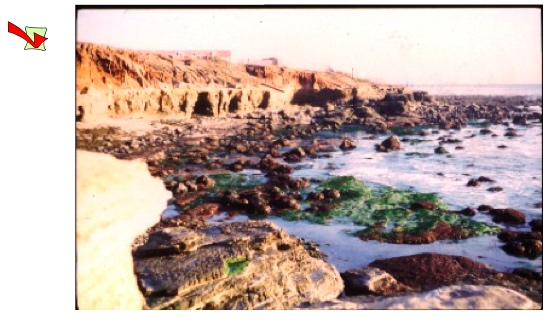 Where Tidepools2