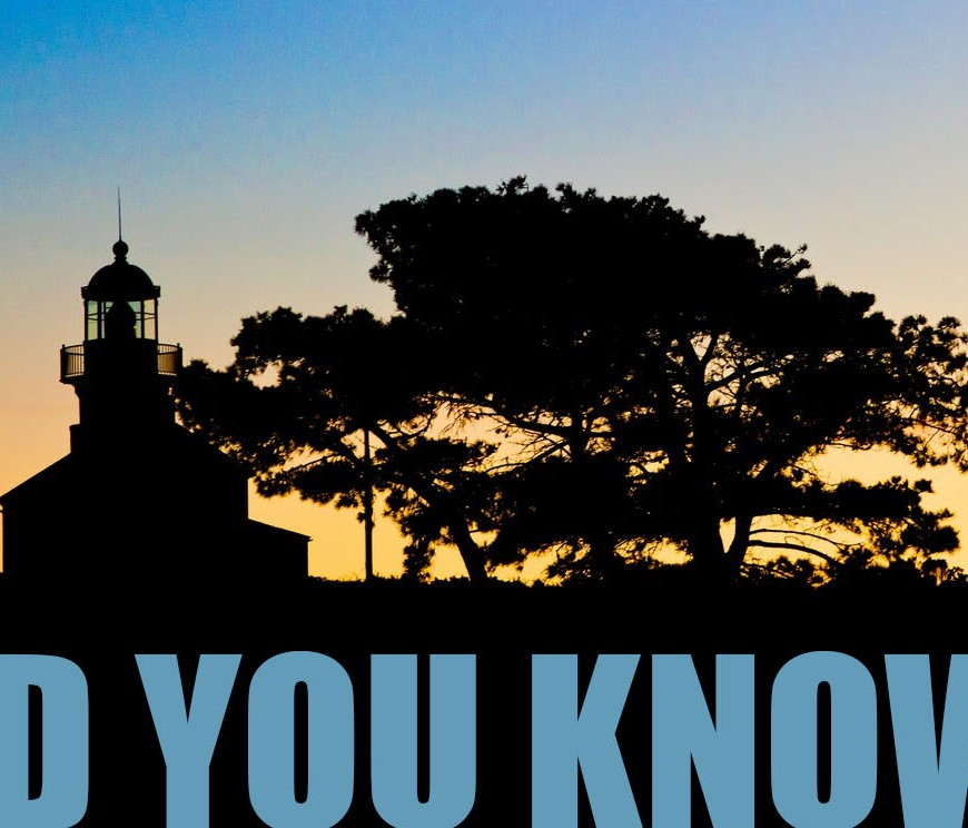 A lighthouse and pine tree in shadow at sunset. The words Did You Know are in blue at the base of the image
