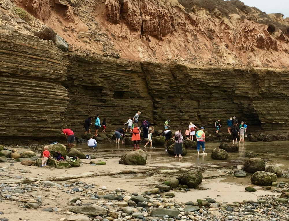 People walking along rocky shore adjacent to sandstone cliffs