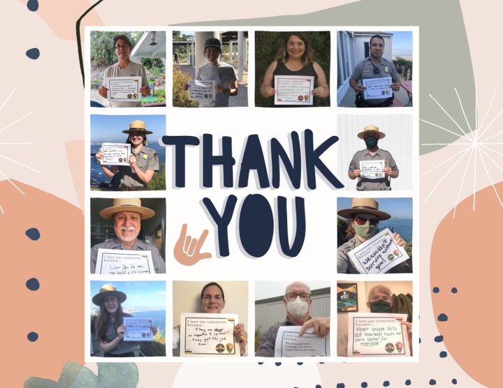 """A collage of 12 rangers and park staff in uniform and face masks holding handwritten thank you signs, all circled around a large and capitalized """"Thank You"""" and a small """"love"""" ASL sign. The background of the collage is a modern and abstract mix of orange circles, blue dots, green watercolor splashes, and black-and-white lines."""