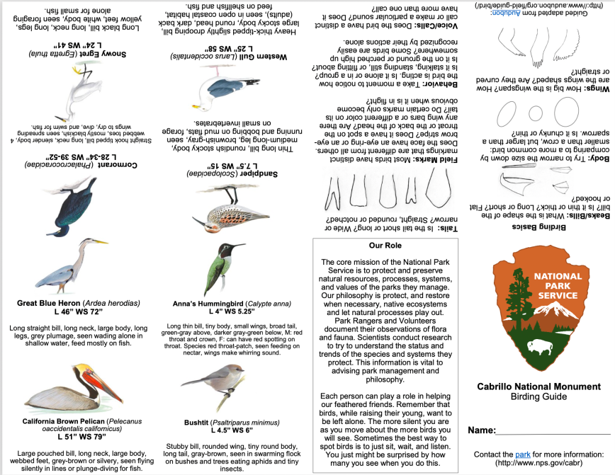 Text and images showing various birds at Cabrillo