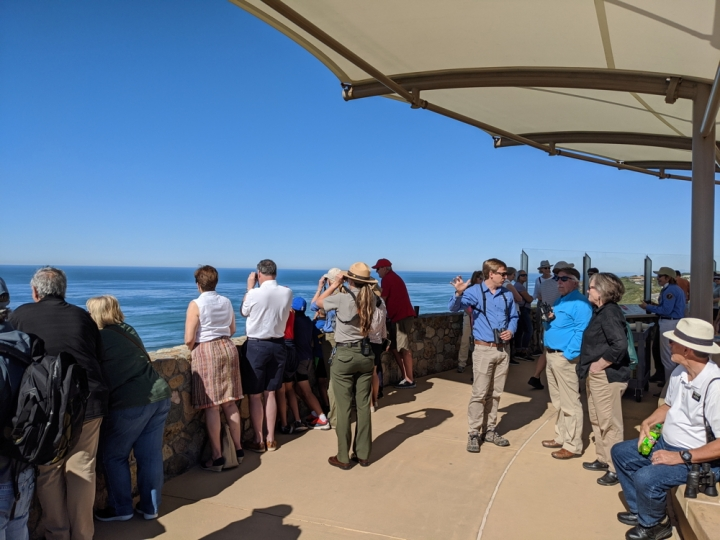 A crowd of more than 15 park visitors stand at a rock wall looking toward the ocean. Ranger Amanda holds binoculars and faces the ocean. Volunteer Wyler holds binoculars and talks to two park visitors and points toward the ocean.