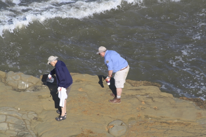 Volunteer Ken and Dave Stand on a rock in the ocean with a wave about to crash near them. Ken pours liquid from a jug on the ground.