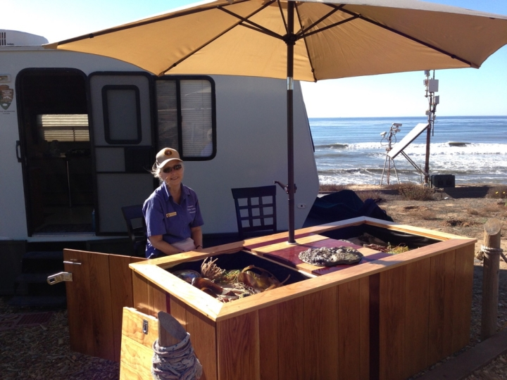 Park volunteer Becky sits behind the tidepool Education Table under a tan umbrella. The table contains sand and models of sea creatures found in Cabrillo's tidepools. The tidepool trailer, webcams and ocean are in the background.