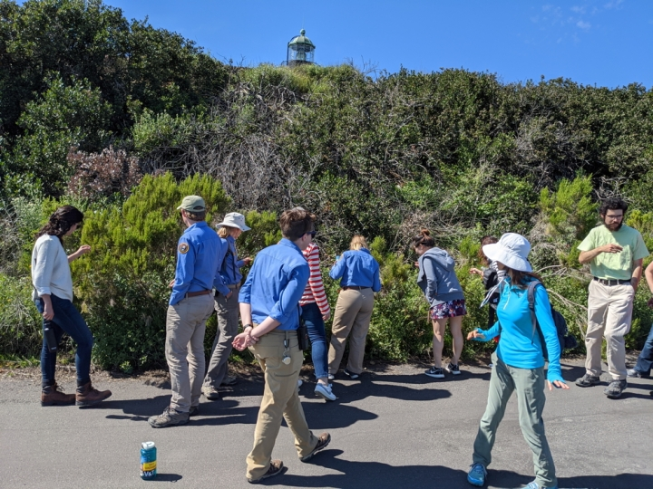 A large group of volunteers and staff inspect plants on a hill along a paved portion of the bayside trail. The very top of the lighthouse peaks over the top of the green hill.