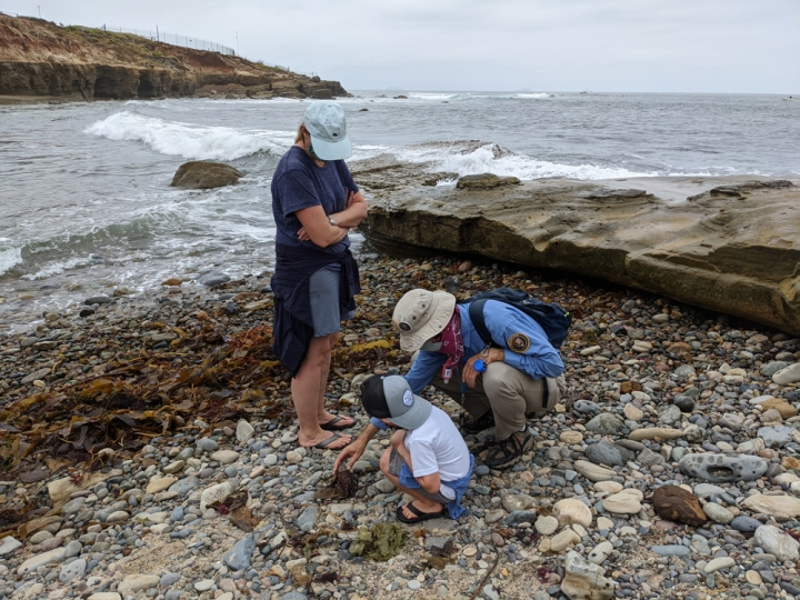 Jose crouches down in the rocky beach of the tidepool area to show a small child the molt of a lobster. The child's mother looks down at them. Beyond them are waves crashing and the coastline meandering.