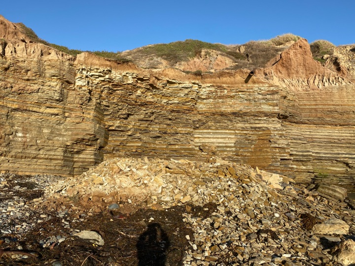 A rock collapse of soft tan sandstone cliffs