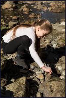 A girl turns over a rock on a beach.