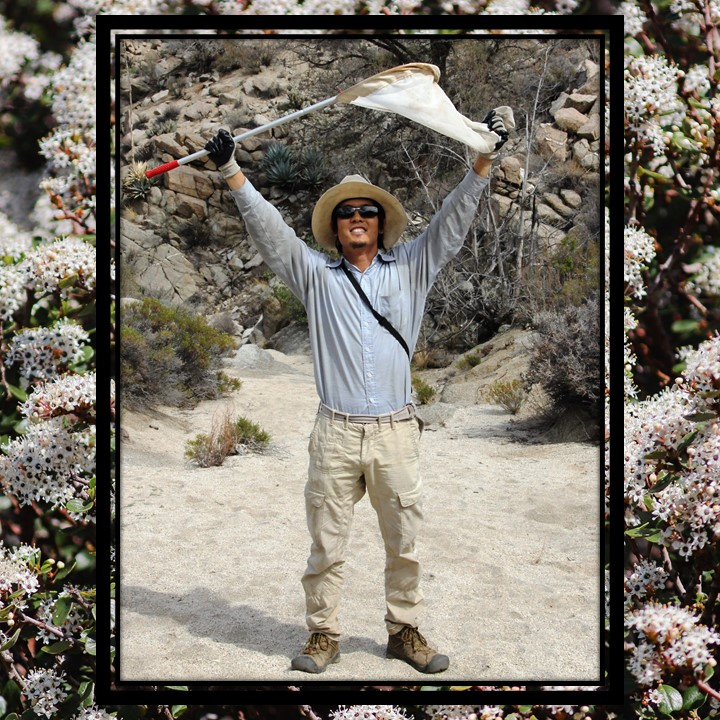 A man in cargo pants, wide-brimmed hat, and sunglasses stands on a dirt trail and holds a net with handle attached over his head. This image is overlaid over a background of small, abundant white flowers on a green and brown bush