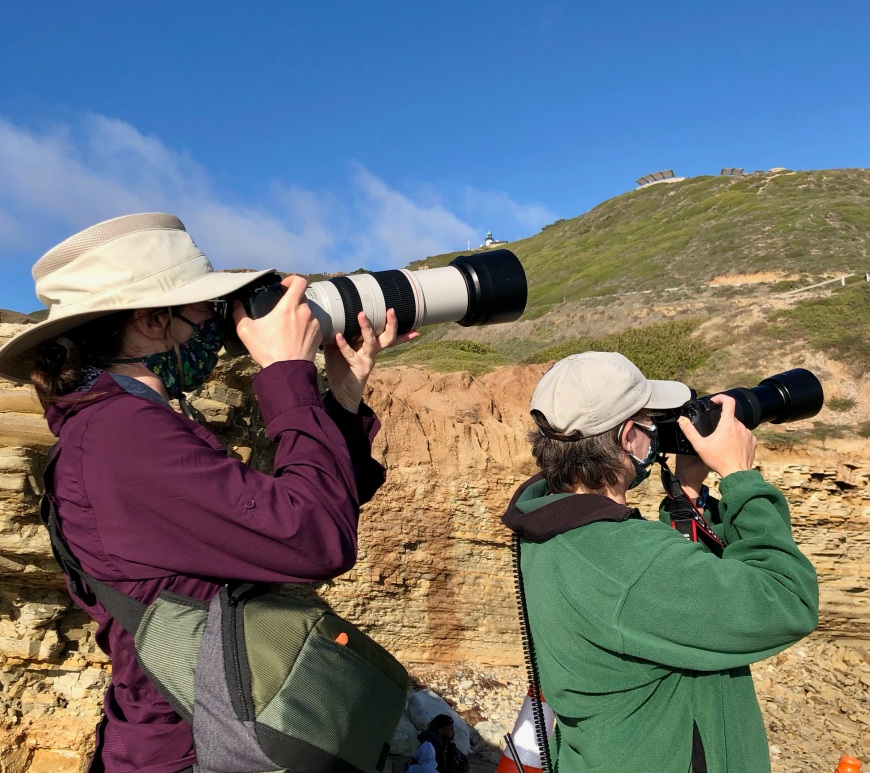 Two women holding cameras with long lens pointed at the sky, watching birds.